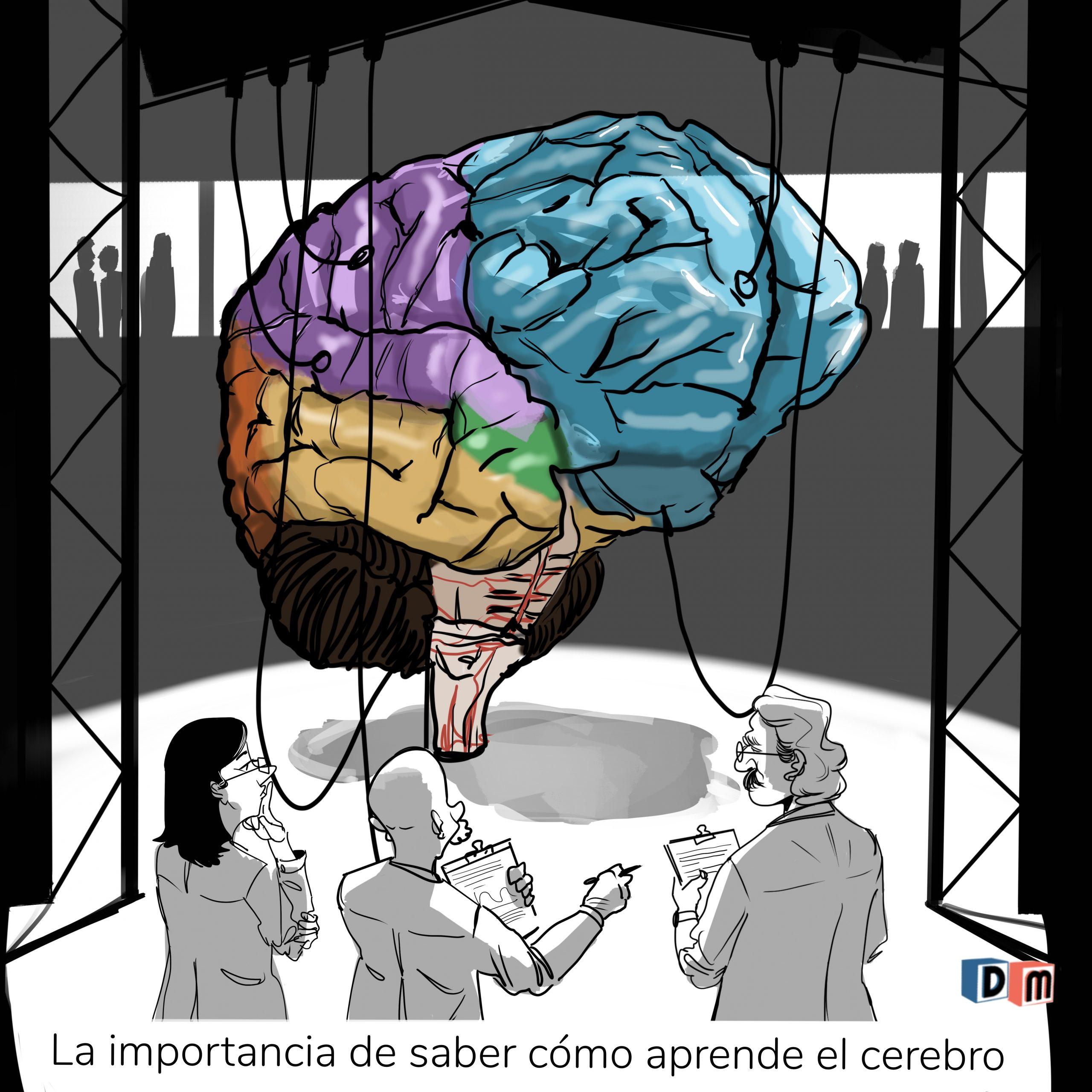 David Mora_Viñeta 18_La importancia de saber cómo aprende el cerebro